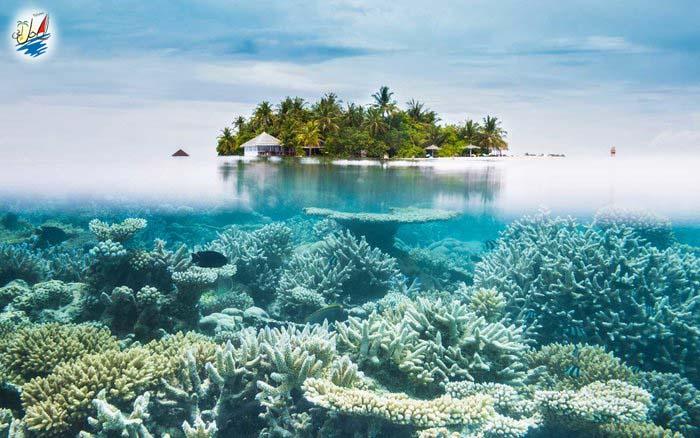 خبر زیباترین سواحل جهان کدامند؟