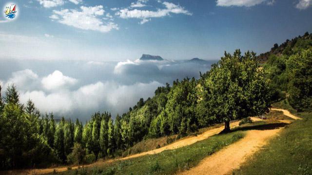 خبر جنگل های هیرکانی به فهرست میراث چهانی یونسکو اضافه شد