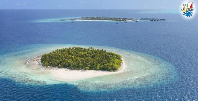 خبر افزایش تعداد گردشگران بریتانیایی در مالدیو