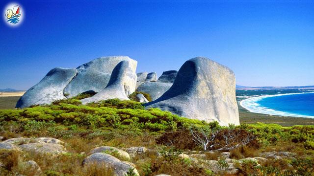 خبر گردشگران بیشترین هزینه را در سفر به استرالیا میکنند