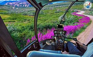 خبر بهترین راه برای دیدن آلاسکا