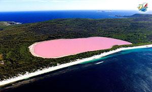 خبر دریاچه ی صورتی هیلیر در استرالیا یکی از عجایب غیرمعمول طبیعت
